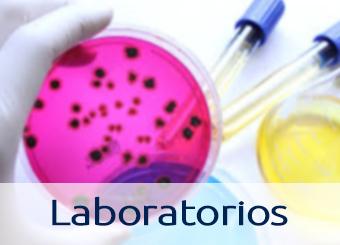 Laboratorios-Division